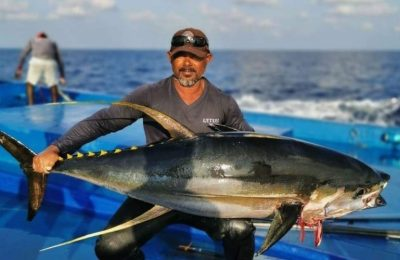 Control price to be set for Yellow fin tuna